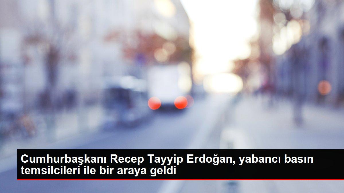 Cumhurbaşkanı Recep Tayyip Erdoğan, yabancı basın temsilcileri ile bir araya geldi